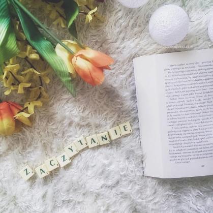 iambiblioholic - recenzje książek by welkinson